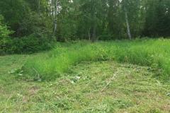 Скос-травы-1